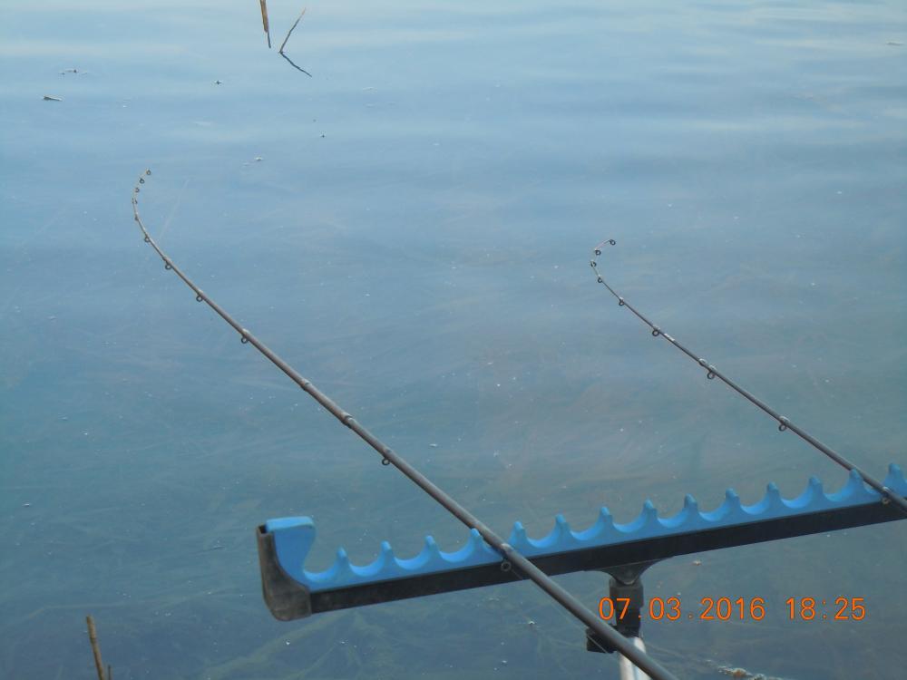 рыбалка в ставропольском крае канал