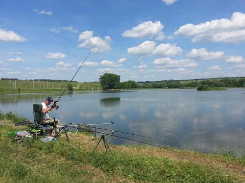Рыбалка в чеховском районе мос