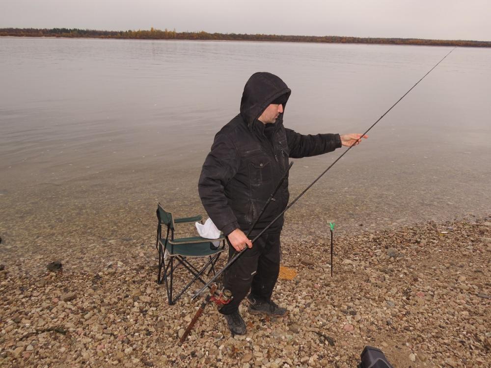 сообщество рыболовов марий эл
