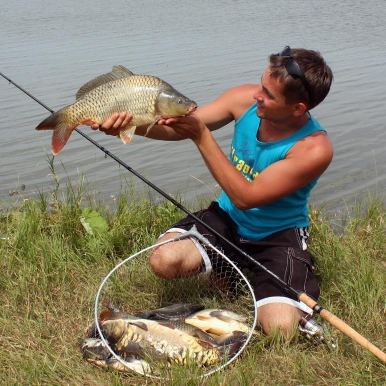 виды удочек для рыбалки летом с фото