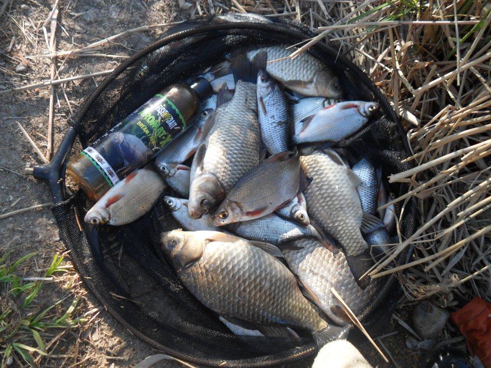 Фишингсиб рыбалка новосибирск прогноз клева рыбы