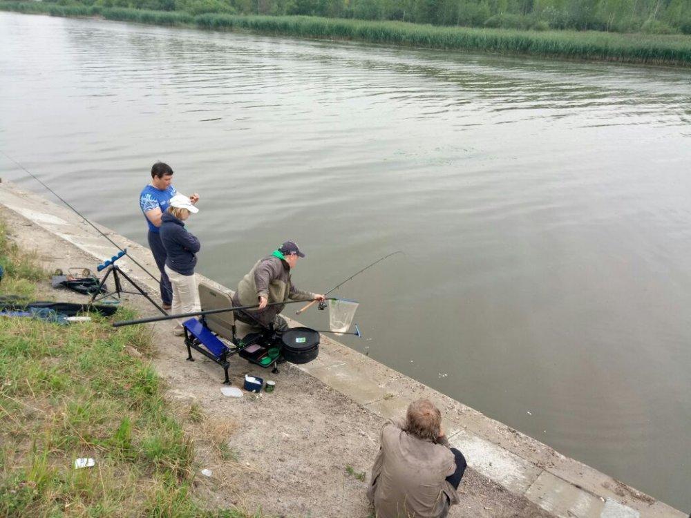 английская снасть рыболовный