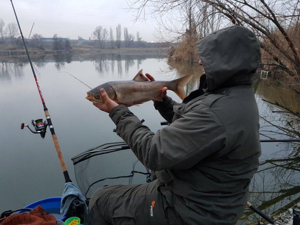 алексей фадеев ловля плотвы на фидер видео