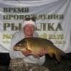 MaratDeev