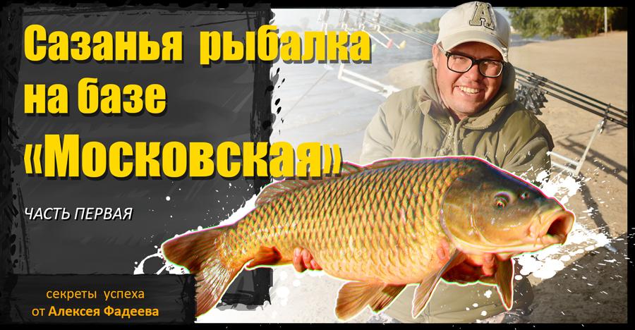 Сазанья рыбалка на базе «Московская»